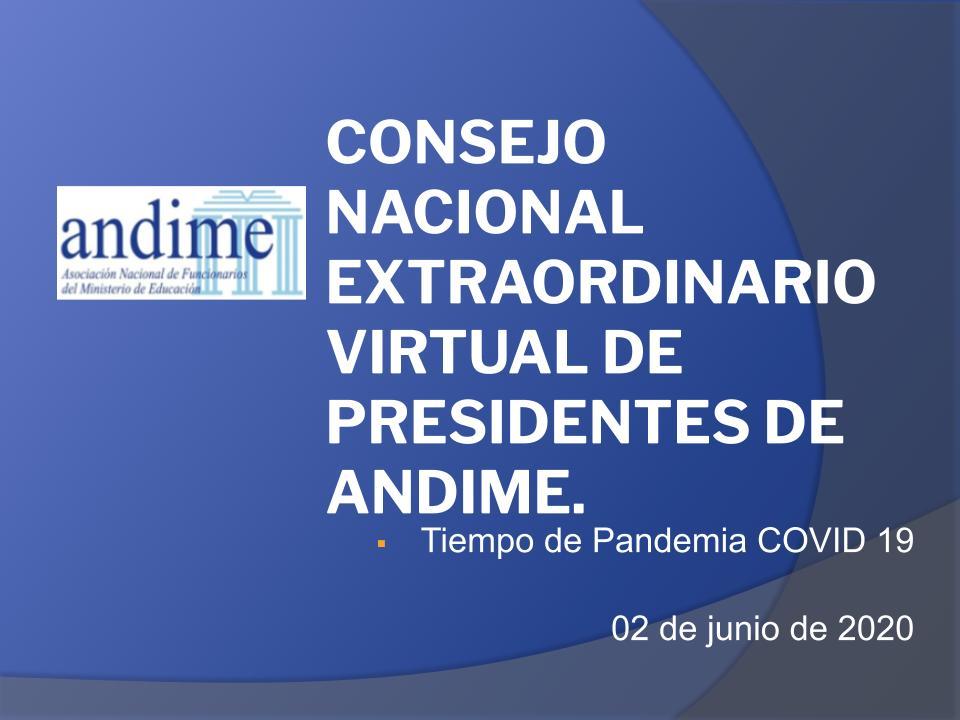 Primer Consejo Virtual Extraordinario de Presidentes